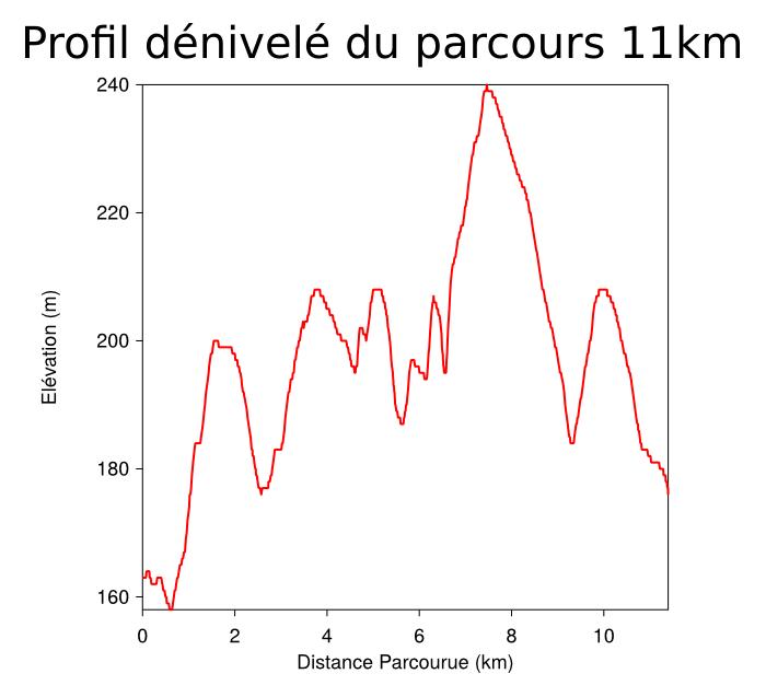 Graphique de dénivelé pour le 11km